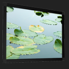 Screen International Flat Elastic Projector Screens
