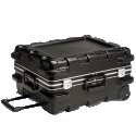 Infocus Carry Cases
